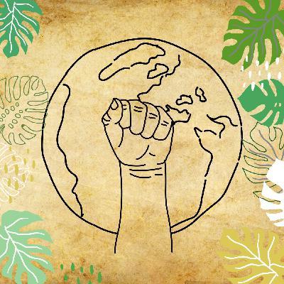 Écologie : l'heure de la radicalité ?