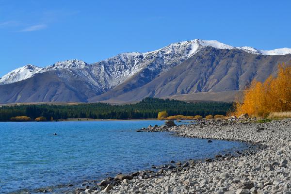 Episodio 3: Nueva Zelanda