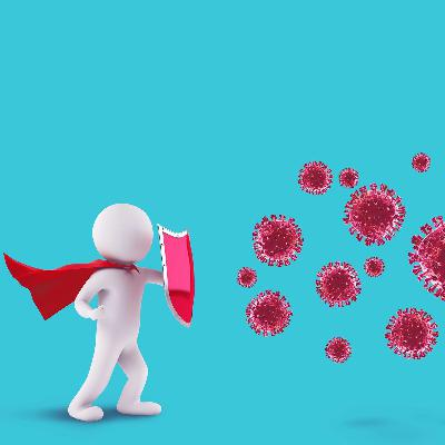 What are antibodies?