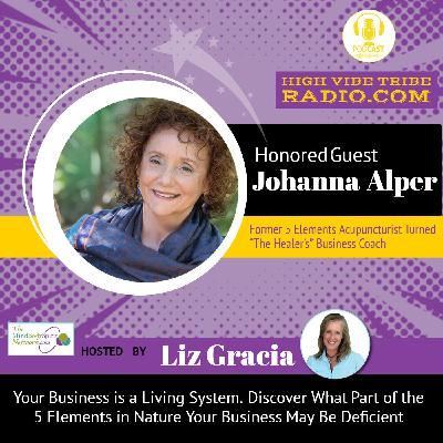 Did You Know Your Business is a Living System? Interview with the Healer's Coach Johann Alper