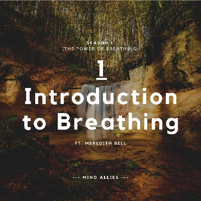 1 - Introduction to Breathing - Yoga Philosophy