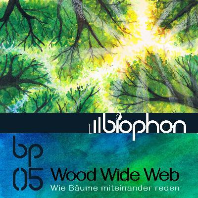 bp05: Wood Wide Web - Wie Bäume miteinander reden