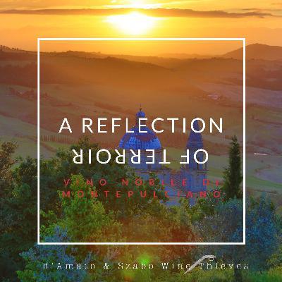 Sangiovese: A Reflection of Terroir in Vino Nobile di Montepulciano