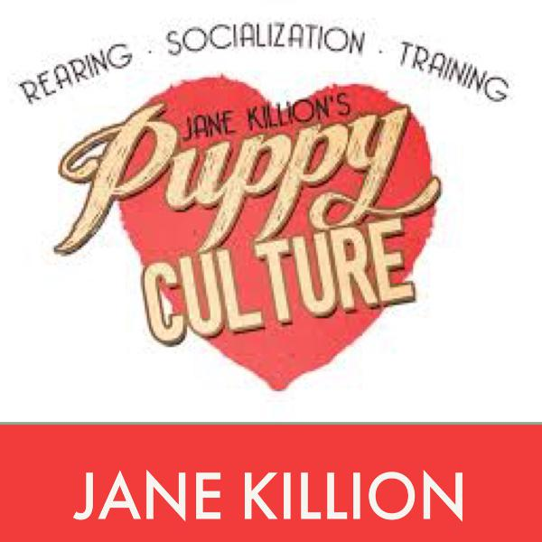 Jane Killion of Puppy Culture & author of When Pigs Fly