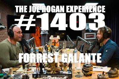#1403 - Forrest Galante