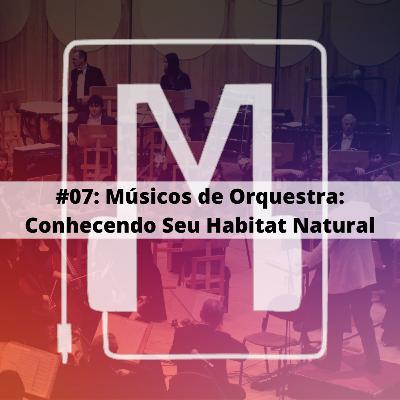 Músicos de Orquestra: Conhecendo seu Habitat Natural