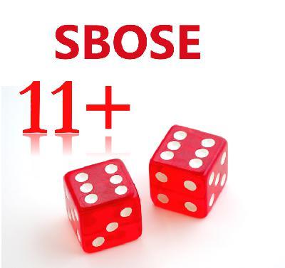 SBOSE Week 11