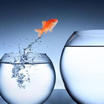 Cosa fare per cambiare vita senza aspettare