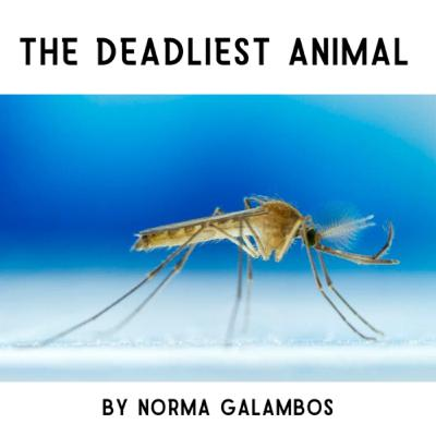 The Deadliest Animal By Norma Galambos