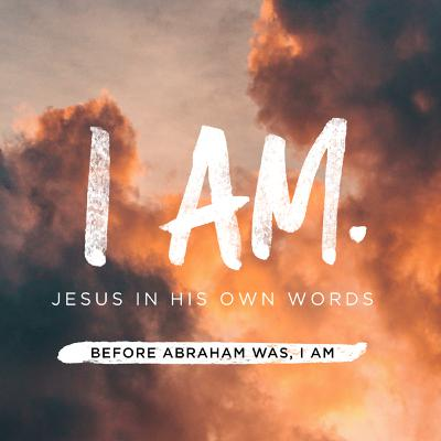 "Bible Study: ""Before Abraham was, I AM"" John 8:48-59"