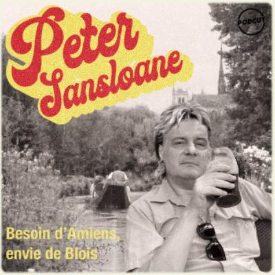 Peter Sansloane - Besoin d'Amiens Envie de Blois