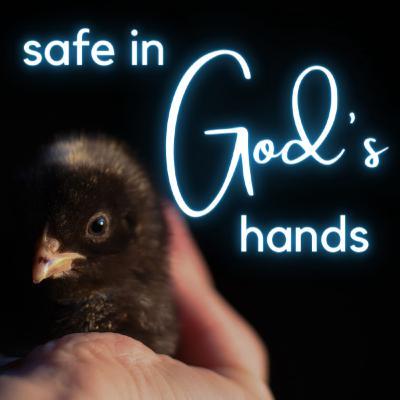 Safe in God's Hands