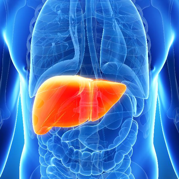Do You Have A Fatty Liver?