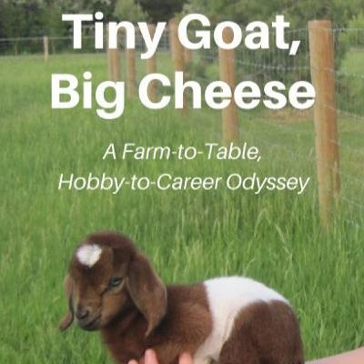 Tiny Goat, Big Cheese