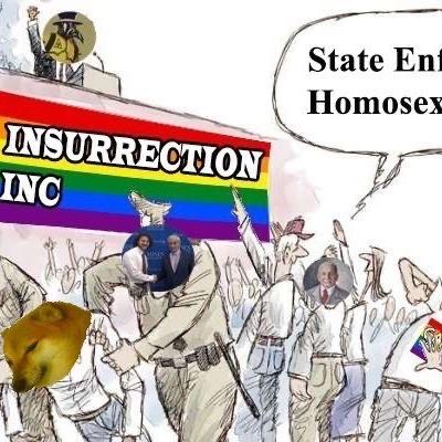 State Enforced Homosexuality, Ancap_Pikachu, ACAB?