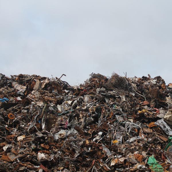 038 - The Garbage Episode