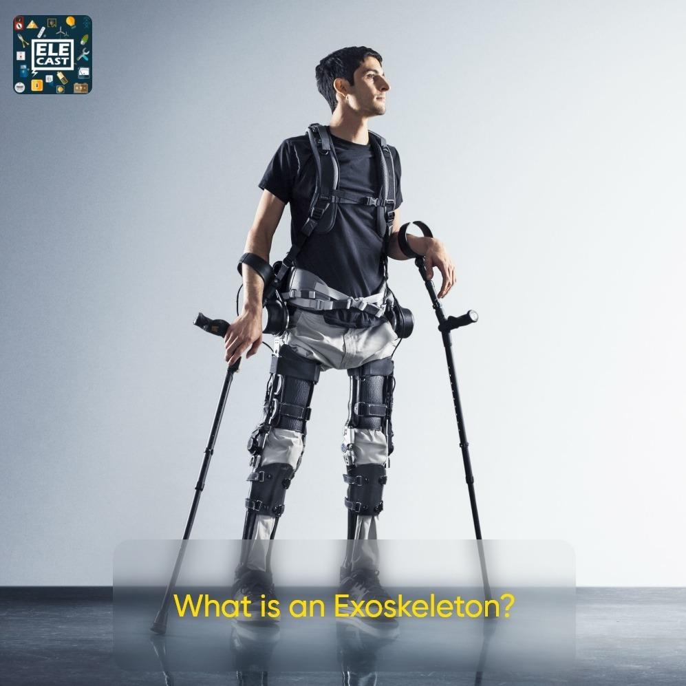 اسکلت بیرونی چی چی هست؟ - What is an Exoskeleton؟