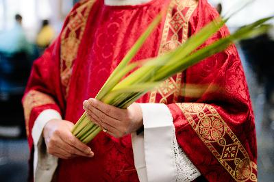 Reflections from Msgr. Lavalley for Palm Sunday