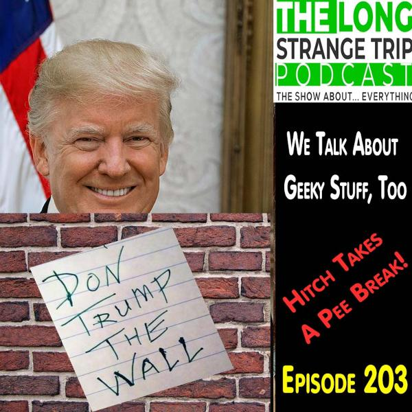 LST 203 - Donald's Wall.