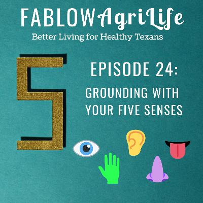 Grounding with your Five Senses - Episode 24