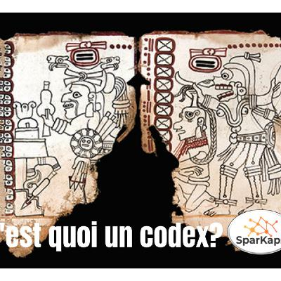 C'est quoi un codex?