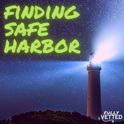 35. Finding Safe Harbor: Online Refuge for Veterinarians