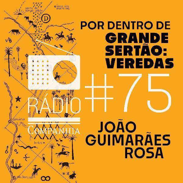 #75 -  Por dentro de Grande sertão: veredas