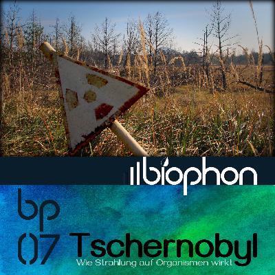 bp07: Tschernobyl - Wie Strahlung auf Organismen wirkt