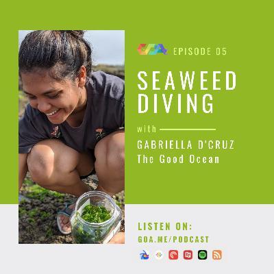 Seaweed diving with Gabriella D'Cruz of The Good Ocean   Episode 05