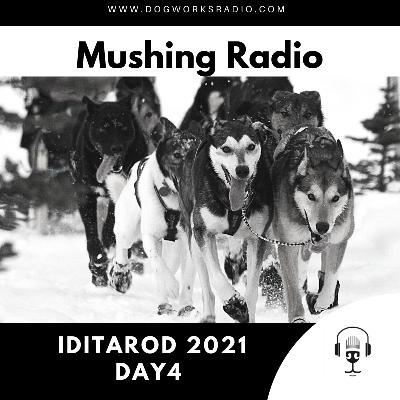 Iditarod 2021 Daily Coverage | Day 4