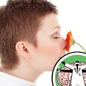 How Do I Smell?
