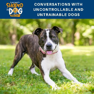 Conversations with Uncontrollable and Untrainable Dogs