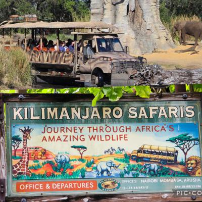 Episodes #399 & #400 - Kilimanjaro safaris