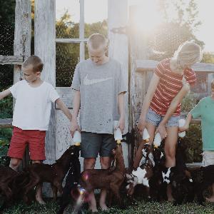 Episode 37: Homeschooling Through the Summer?