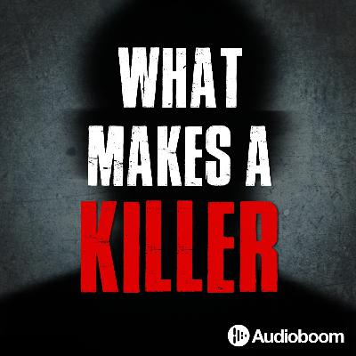 Introducing: What Makes A Killer