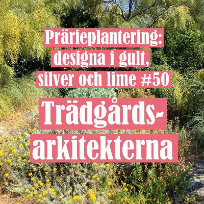 Prärieplantering: designa i gult, silver och lime