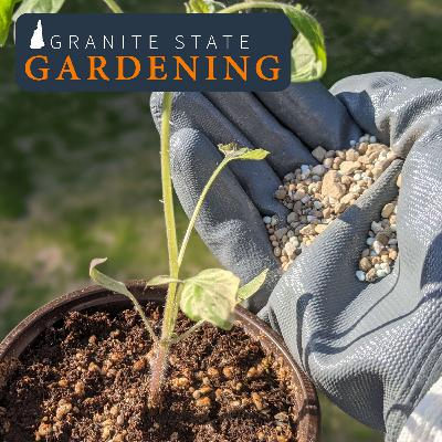 Choosing and Using Fertilizers in the Yard and Garden