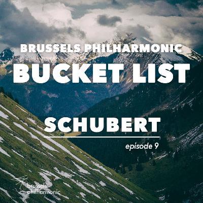 De Grote symfonie van Schubert: Hans van der Zanden (hoorn)