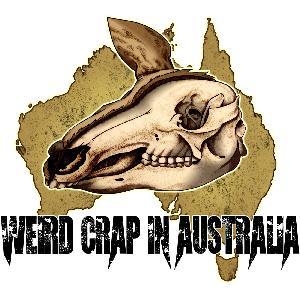 Episode 176 - The Aussie Arachnids