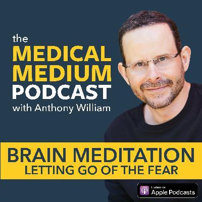 003 Brain Meditation: Letting Go Of Fear