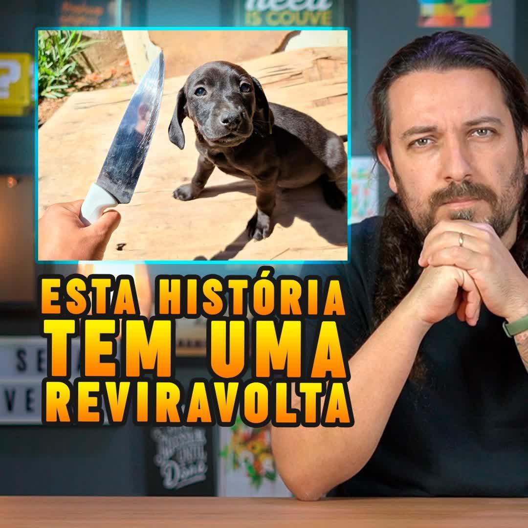 Carne de cachorro: canal ensina a receita para ajudar os animais
