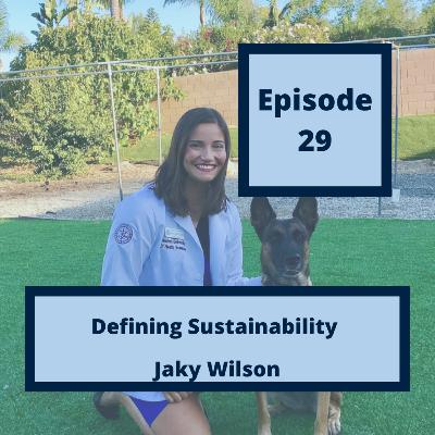 29 - Defining Sustainability, with Jaky Wilson