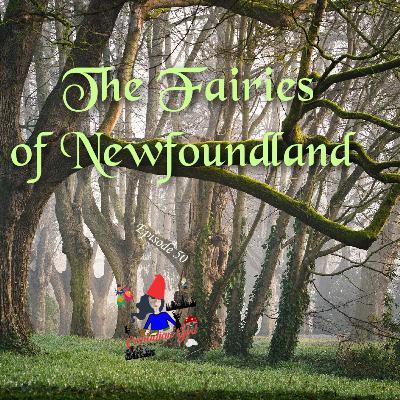 The Fairies of Newfoundland