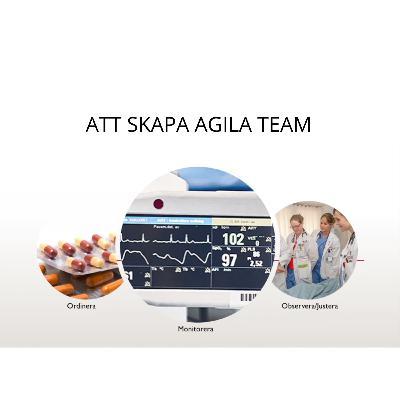 Att skapa agila team. Fredrik Scheja, Jonas Jaani