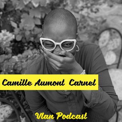 Vlan #104 La diversité est morte. Vive l'inclusion avec Camille Aumont Carnel