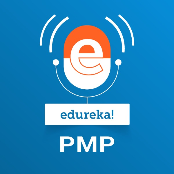 PMP: Project Management Professional:edureka!