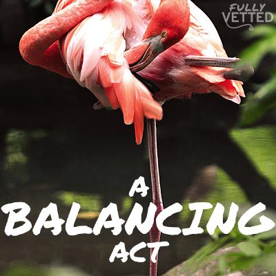 """19. Balancing Act: How to """"Do it All"""" without Neglecting Yourself"""
