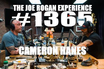 #1365 - Cameron Hanes