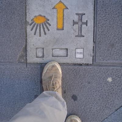 FIRST STEPS ABROAD
