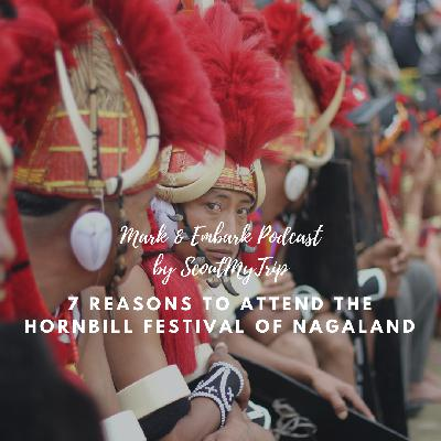 7: 7 Reasons To Attend the Hornbill Festival of Nagaland